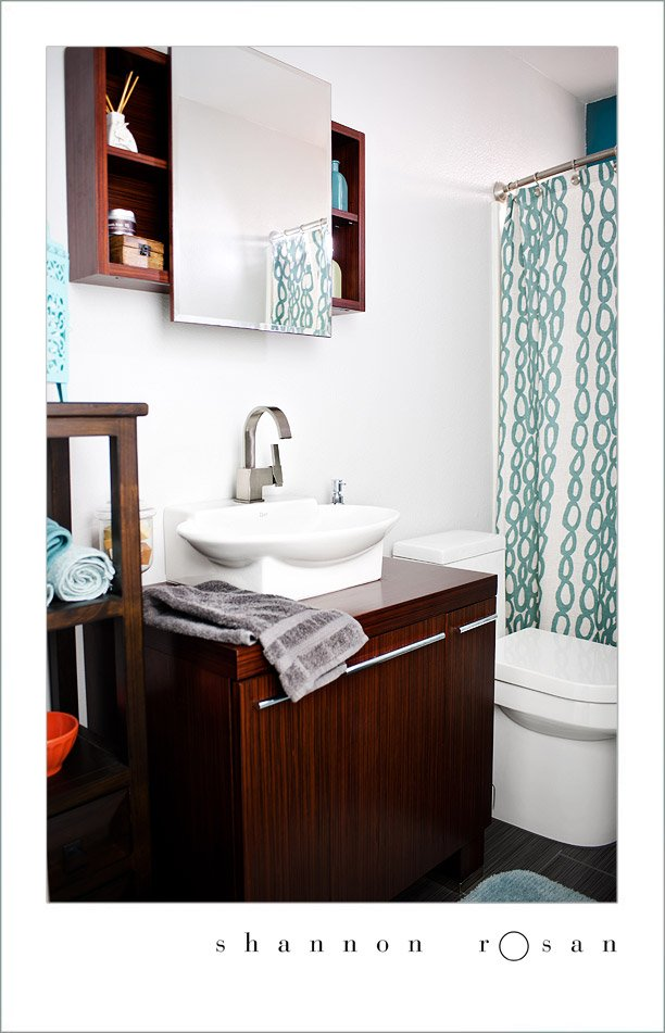 Guest Bathroom Remodel with Danze Products
